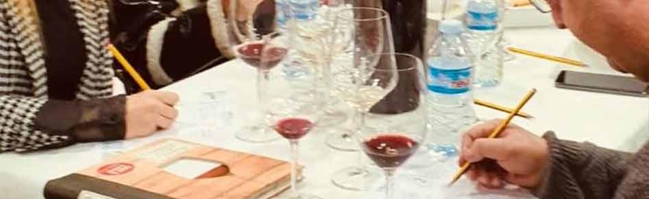 cursos de vinos